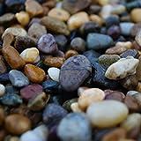 RockinNature - Ciottoli di spiaggia irlandese, pietre decorative per giardino, 20 kg