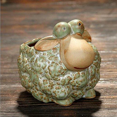 Snail Pot (Youfui Cute Animal Cartoon Flower Pot Succulent Planter,Turtle,Snail,Sheep,Hedgehog Ornament)