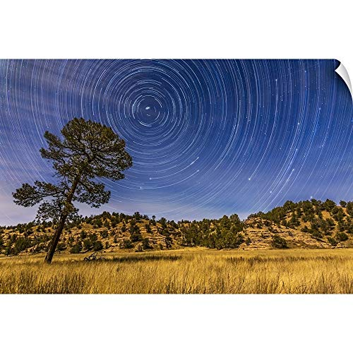 CANVAS ON DEMAND Alan Dyer Wall Peel Wall Art Print Entitled Circumpolar Star Trails Over Mimbres Valley in The Gila National Forest, New Mexico 18