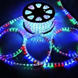 Katop Flexible 100' LED Crystal Clear PVC Tubing Rope Light Indoor/outdoor Boat Decorative Party Christmas Holiday Business Restaurant Light Kit 110v/60hz Customizable Length (Multicolor)