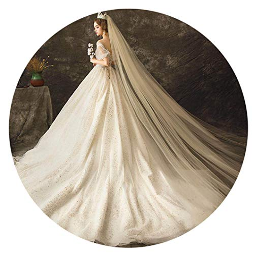 - FDesigner Bride Cathedral Veil Wedding Headpieces Statement Veils Bridal Long Veil with Comb 2T (Champagne)
