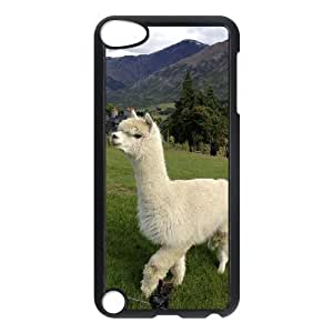 ALICASE Design Phone Case Lama Pacos For Ipod Touch 5 [Pattern-1]