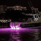 Lumitec 101320 SeaBlazeX Spectrum LED Underwater