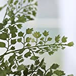 Factory-Direct-Craft-Pair-of-Artificial-Maidenhair-Fern-Bushes-for-Home-Decor-and-Displaying