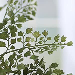 Factory Direct Craft Pair of Artificial Maidenhair Fern Bushes for Home Decor, and Displaying 3