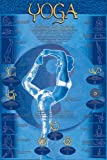 HUGE LAMINATED/ENCAPSULATED Yoga - Postures & Chakras POSTER measures approx 36x24 inches (91.5x61cm) by Laminated Posters