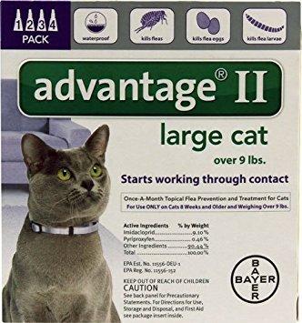 Purple Advantage Cat - Advantage II Purple 4-Month Flea Control for Large Cats Over 9 lbs -- 4 Tubes
