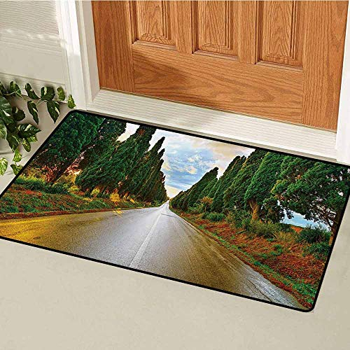 GUUVOR Italian Commercial Grade Entrance mat Boulevard with Trees Old European Village Country Life Destination Artistic Photo for entrances garages patios W47.2 x L60 Inch Multicolor