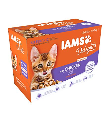 IAMS Delights Wet Food for Kittens 1-12 Months with Chicken in Gravy, 12 x 85 g