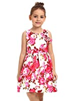 Ephex Toddler Girls Flower Princess Silky Dress with Floral Print 2-11T