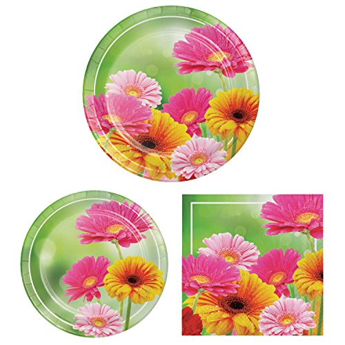 Gerber Daisy Party Pack for 16 Guests, 48 Piece Set: 16 Dinner Plates, 16 Dessert Plates, 16 Luncheon Napkins