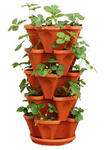 5 Tier Stackable Strawberry, Herb, Flower, and Vegetable Planter - Vertical Garden Indoor/Outdoor (Herb Ideas Garden For Patio)