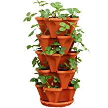 Vegetable planter Keter easy grow elevated flower garden planter