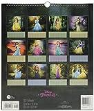 Disney Princess Special Edition (2017)