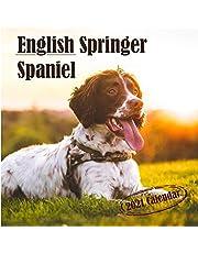 English Springer Spaniel: 2021 Mini Wall Calendar, 7 x 7 Inch - 12 Months