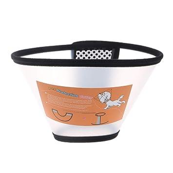 CADANIA Collar de protección para Mascotas Collar isabelino Perro Gato Herida Herida Cono de protección - 6: Amazon.es: Hogar