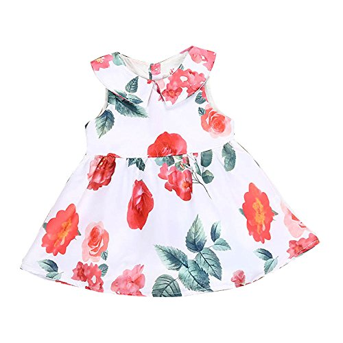 (Wenjuan Peter Pan Collar Floral Princess Party Dresses Outfits Toddler Newborn Infant Baby Girl Clothes (for 6 Months))