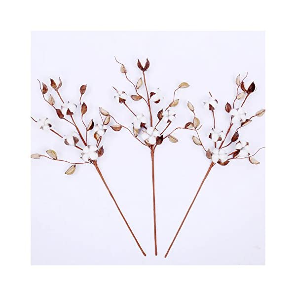 Cotton-Stems-24-30-Tall-Cotton-BudsBolls-Farmhouse-Style-Natural-Real-Elastic-Cotton-Stalk-Rustic-Floral-Display-Filler-Wedding-Centerpiece-for-Home-Wall-Or-Table-Decor