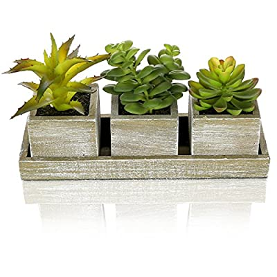 MyGift Set of 3 Realistic Artificial Succulent Plants w/Rustic Style Wood Square Pots & Rectangular Tray - RUSTIC FAUX SUCCULENT SET: 3 realistic-looking faux succulent plants, each housed in a rustic-style wood planter box. DISTRESSED & VIBRANT: Contrast of weathered wood planters and lively looking faux plants provides a striking decorative accent DISPLAY INDIVIDUALLY OR AS SET: 3.4-inch square planters can be used to decorate small spaces; set with 8-inch tray makes an ideal low-key centerpiece - living-room-decor, living-room, home-decor - 51AMLmxk5FL. SS400  -