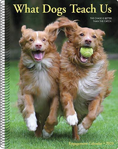 - What Dogs Teach Us 2020 Engagement Calendar