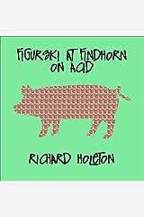 Figurski at Findhorn on Acid CD-ROM