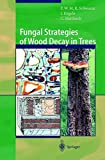 img - for Fungal Strategies of Wood Decay in Trees book / textbook / text book