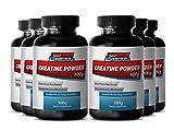Pure Creatine Pills - Creatine Powder 100mg - Increase Weight Gains with Top Creatine Powder (6 Bottles)
