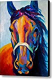 Amazon Price History for:Horse Art Prints On Canvas Animal Painting For Home Decoration,Horse Pattern,19 x 25 inch canvas