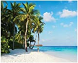JP London MD4A038 10.5-Feet Wide by 8.5-Feet High Paradise Ocean Breeze and Palm Trees Beach Removable Full Wall Mural