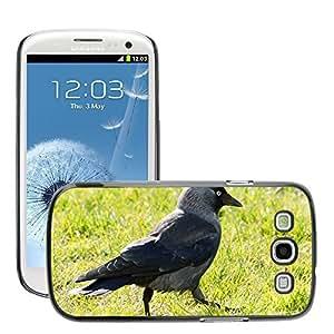 Hot Style Cell Phone PC Hard Case Cover // M00110023 Bird Jackdaw Corvus Monedula Animals // Samsung Galaxy S3 S III SIII i9300