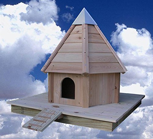 Floating Duck House (Heartwood 160A Aqua Duck Decorative Bird House)