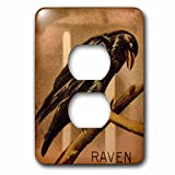 3dRose Scenes from the Past Magic Lantern Slide - Vintage scientific study slide of a raven. - Light Switch Covers - 2 plug outlet cover (lsp_240425_6)