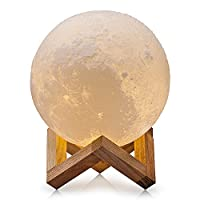 CPLA Lighting Night Light LED 3D Printing Moon Lamp, Warm and Cool White Dimm...