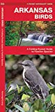 Arkansas Birds: A Folding Pocket Guide to Familiar Species (A Pocket Naturalist Guide)