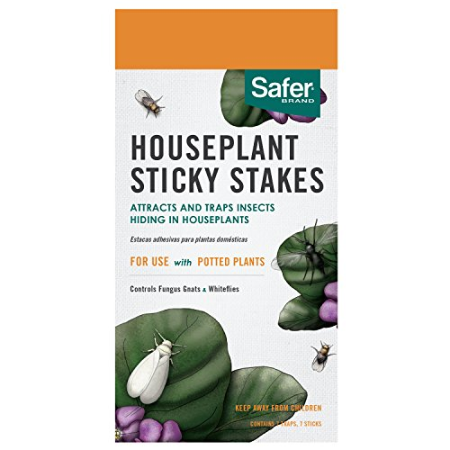 Safer Brand House Plant Sticky Stakes 7 traps - 12 pack 5026 by Safer Brand