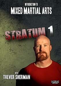 Intro to Mixed Martial Arts: Stratum 1