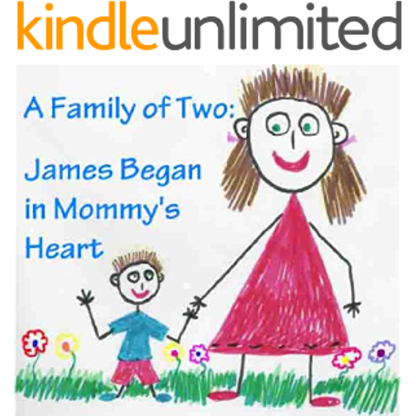 Amazon Com A Family Of Two James Began In Mommy S Heart Single Mom Books Single Mothers By Choice The Happy Family Children S Book Collection 3 Ebook Reed Elizabeth Kindle Store