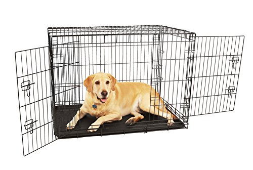 Carlson Compact and Secure Double Door Metal Dog Crate, Large, Black with Divider Panel