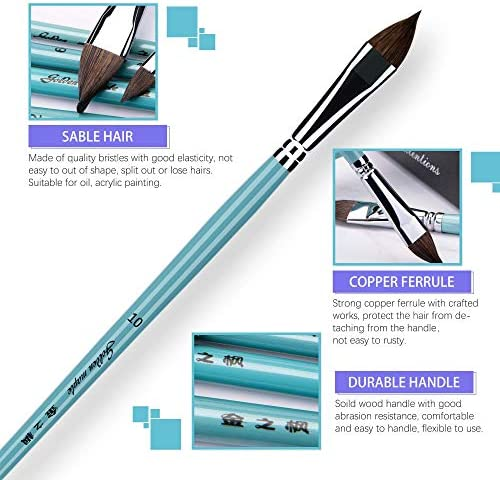 Suitable for Beginner Professional Artist Filbert Paint Brush Sable Hair Cats Tongue Shape Set of 6pcs for Watercolor Acrylic /& Oil Painting Paint by Numbers Students