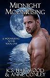 Free eBook - Midnight Moonrising