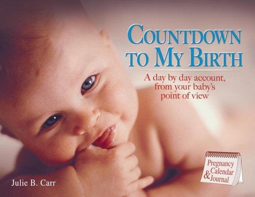 Countdown to My Birth: A day by day account from your baby's point of view