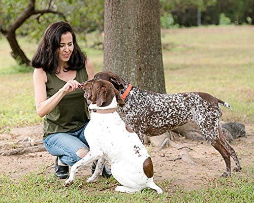 Sancho & Lola's 6