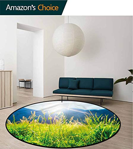 RUGSMAT Nature Modern Vintage Rugs,Pastoral Field Alpine Meadow Lifts Basket Swivel Chair Pad Coffee Table Rug -