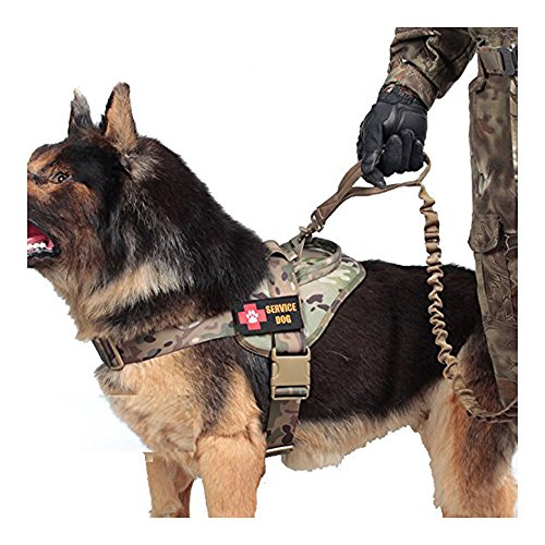 Dog Harnesses For Small Dogs Velcro