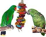 Color Splash Bird Chew and Preen Bird Toy (Large)