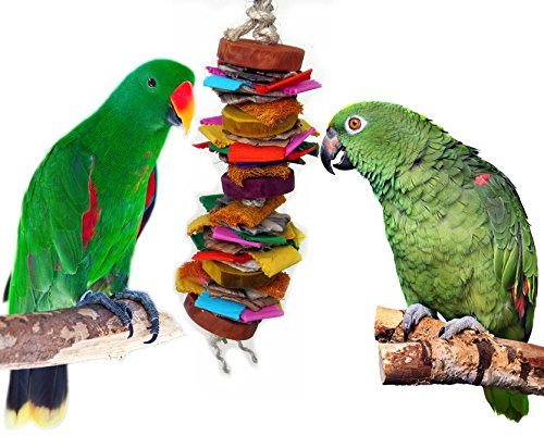 Color Splash Bird Chew and Preen Bird Toy (Large) by Avianweb