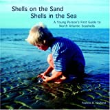 Shells on the Sand, Shells in the Sea, Frances Haviland, 1413490662