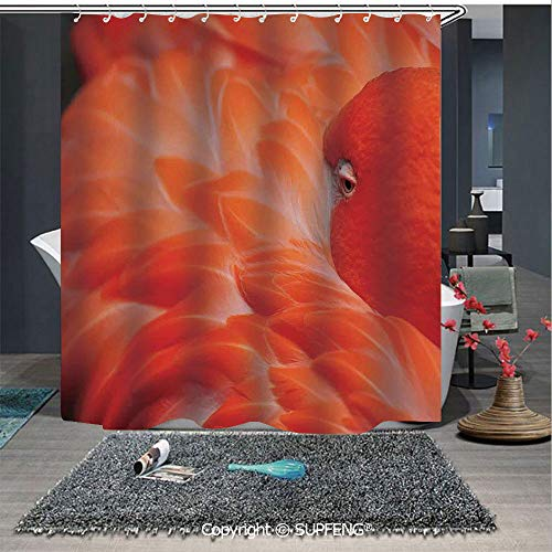 (Interesting shower curtain Flamingo Feathers Fuzzy Waterbird Graceful Animal Closeup Wildlife Scenic Picture (72W x 72L Inch) Colorful,bold design, waterproof, Easy to care ,privacy protection)