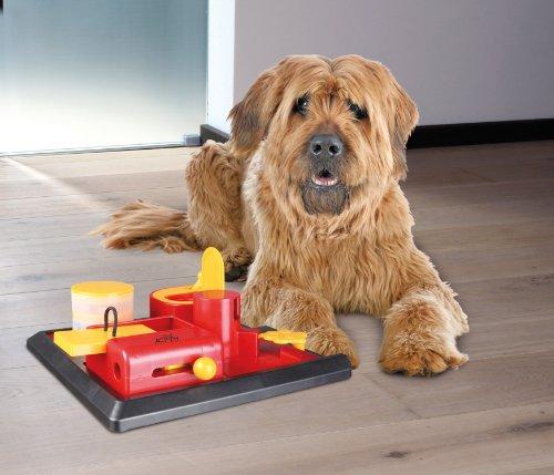 Trixie 32031 Dog Activity Poker Box Vario 2 2