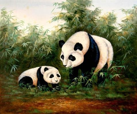 Oil Painting 'Pandas In The Bamboo Grove For Home Decor', 12 x 14 inch / 30 x 37 cm , on High Definition HD canvas prints is for Gifts And Basement, Bed Room And Gym Decoration, factory (Instant Lace Front Wig)